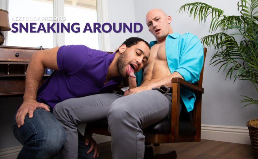 Sneaking Around